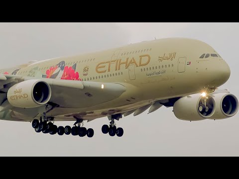 FANTASTIC CLOSE UP Landings | A380 B747 A330 B717 | Sydney Airport Plane Spotting