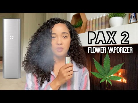 PAX 2 Review | Smoke With Me | Delilah's Day