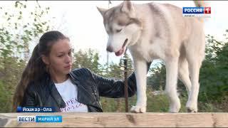 В Йошкар-Оле 90 школьников прошли курсы кинологии в Центре служебного собаководства