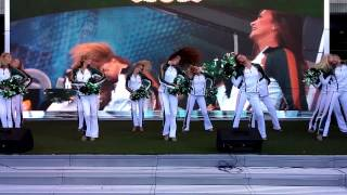 "NY Jets Flight Crew Show Team 2014 ""Fancy"""