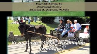 Buggy Bobs Carriage Co : Horse Carriage Manufacturers