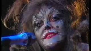 Angelika Milster im Katzenkostüm 'Erinnerung' ZDF-Hitparade 1984
