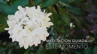 ESTE MOMENTO: Meditacion Guiada de 1 Minuto | A.G.A.P.E. Wellness