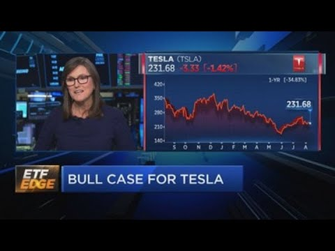 Negative sentiment surrounding Tesla is 'pretty unbelievable,' Ark Invest's Cathie Wood says
