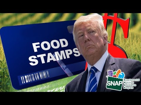 Trump Replacing Food Stamps With Food Delivery
