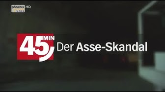45 Min - Der Asse-Skandal  (2012)