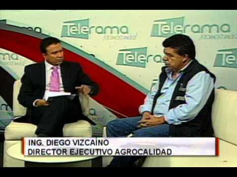 Ing. Diego Vizcaíno