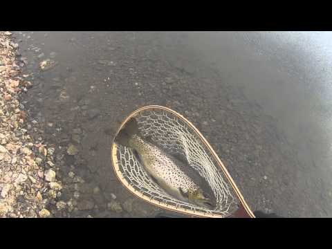 Round Valley Reservoir Fishing: Catching Large Brown Trout