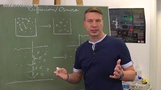 Kreidezeit 127: Diffusion / Osmose