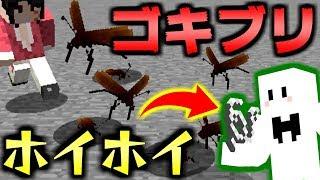 【マインクラフト】ゴキブリ逃走中にゴキブリホイホイ登場で困惑!?【ゴキブリゲーム】【コラボ実況】 thumbnail
