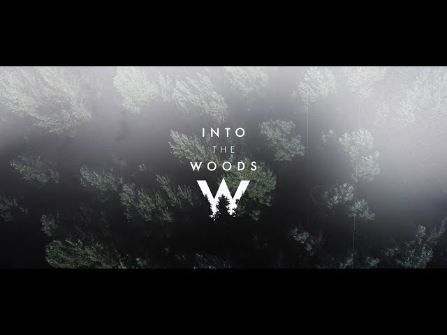 Into The Woods 2019 Official Aftermovie