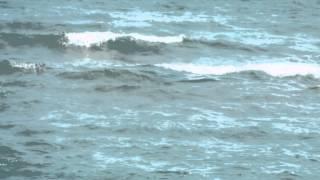 Salif Keita - Bobo / Kuzey Kıbrıs Magosa Sahili