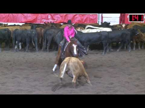 2017 Calgary Stampede Cutting Horse Competition Non Pro Champion