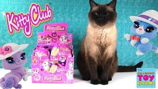 Kitty Club Full Box Surprise Blind Bag Toy Opening With Simon | PSToyReviews