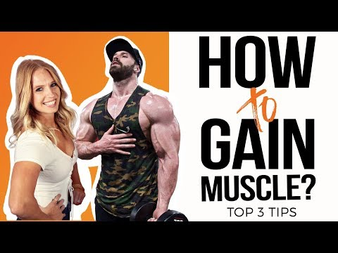 How to Gain Muscle? Top 3 Tips - Bradley Martyn