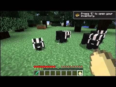 Minecraft Badger Mod  YouTube