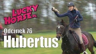Porady LuckyHorse.pl - odc.76 - Hubertus