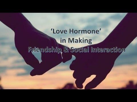 'Love Hormone' in Making Friendship