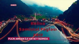 Koliva - Samistal Yaylasi  2017  Resimi
