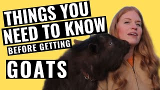 Things You Need To Know BEFORE Getting GoatsThey're IMPORTANT! Raising goats for the goat lover.