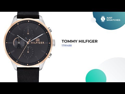 Trendy Tommy Hilfiger 1791488 Watches For Men Full Specs, Prices, In 360