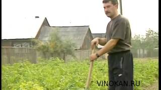 Байки Владимира Виноградова, вырезанное, часть третья