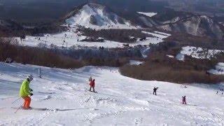 大山国際リーゼンコース ノンストップ