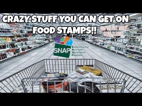 CRAZY STUFF YOU CAN GET ON FOOD STAMPS! PLUS FREE MONEY (legal & Legit)