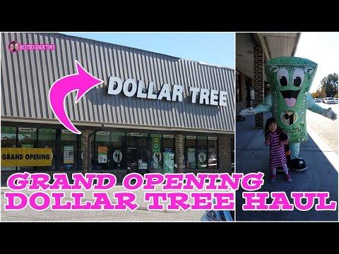 Grand Opening Dollar Tree Haul! (November 2016 Haul)