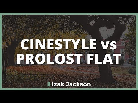 Technicolor Cinestyle vs Prolost Flat // Vlog 20