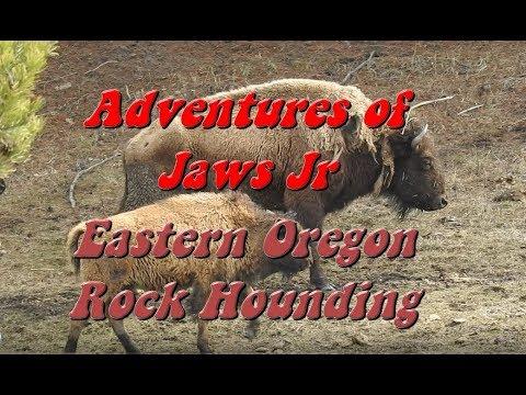Eastern Oregon Rockhounding