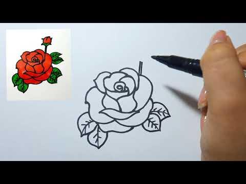 Cách vẽ Hoa Hồng (P3) Rất Đơn Giản II Ong mật mỹ thuật