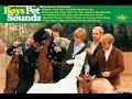 The Beach Boys 連続再生 youtube
