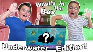 What's in the box UNDERWATER EDITION!