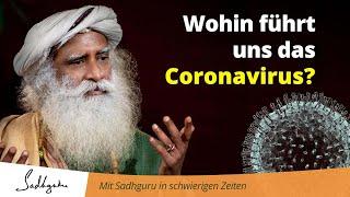 Wohin führt uns das Coronavirus?