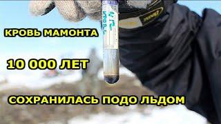 Это Нашли В России  Топ 10 Невероятных Находок