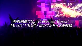 http://www.tm-revolution.com/ T.M.Revolution 2/12リリースLIVE DVD ...