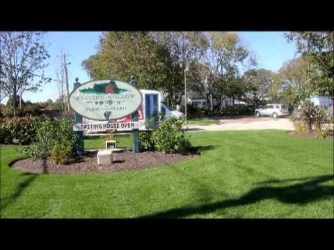 Hilton Garden Inn Riverhead Wine Tours - YouTube