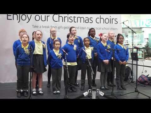 Field View Choir - Hallelujah