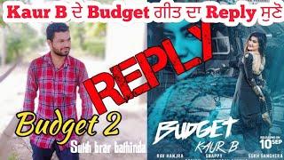 Budget 2●Reply to Kaur B Budget●Sukh brar bathinda