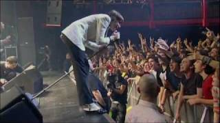 iConcerts - The Hives - Walk Idiot Walk (live).flv