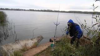 Поклевка Карасика на удочку. В осенний, туманный день. Рыбалка. Ловля карася на поплавок