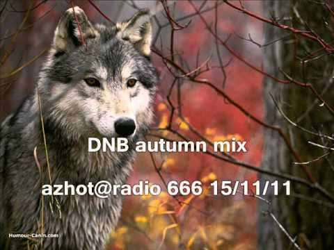 mix Liquid DNB - autumn  by Az-HoT @ radio 666 15/11/11 _1 hour long !!
