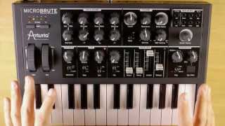 Arturia MicroBrute Analog Synth Demo