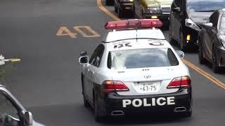信号無視の車が緊急走行の超格好良いパトカーに追跡されて捕まってしまった瞬間 thumbnail