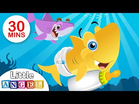 Baby Shark, Itsy Bitsy Spider, BINGO, Humpty Dumpty and many more || Kids Songs Compilation