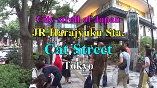 【City stroll of Japan】Cat Street Harajyuku