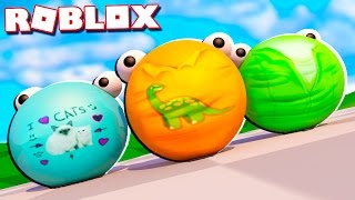 Roblox Adventures - TRANSFORMING INTO A BALL IN ROBLOX!? (Super Blocky Ball)