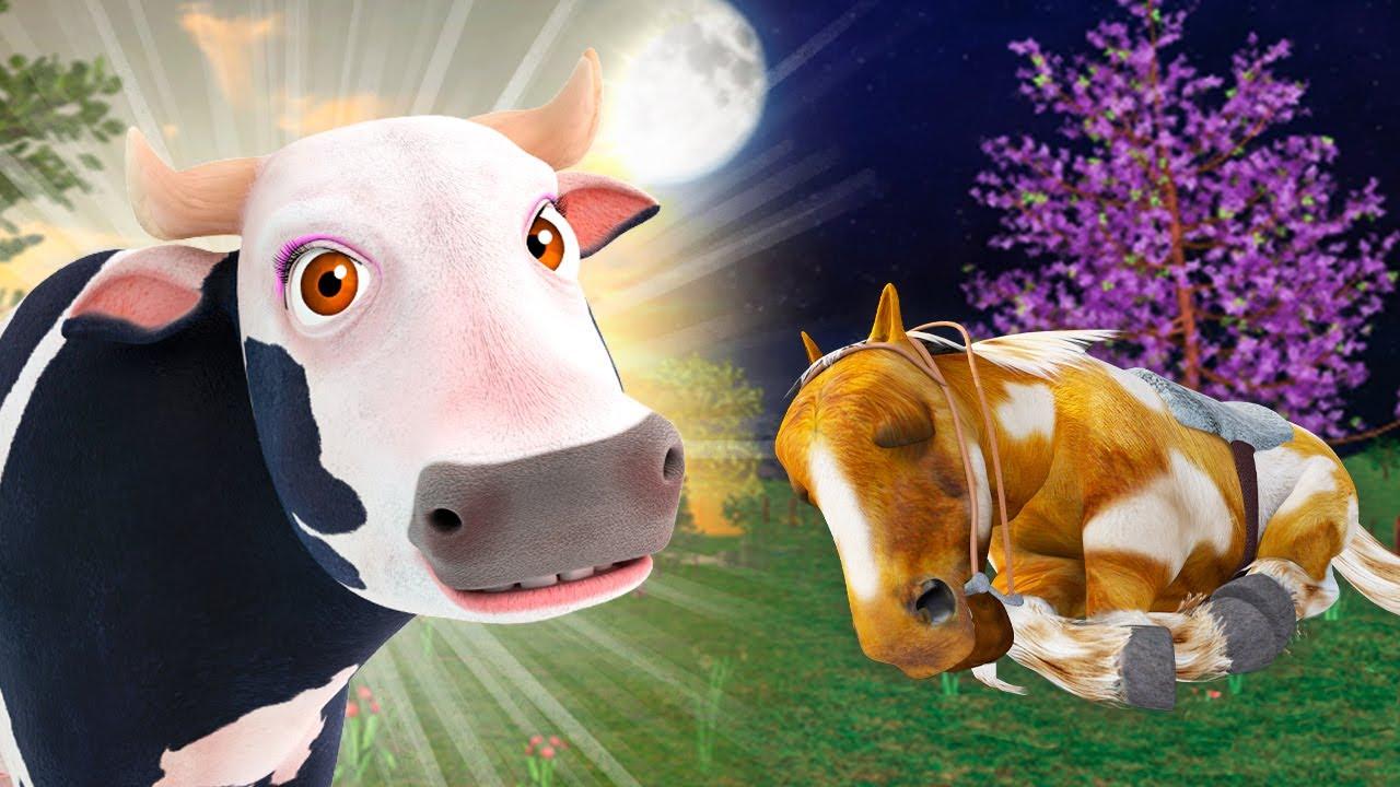El Día y La Noche - Animales de La Granja de Zenón #3 | La Granja de Zenón