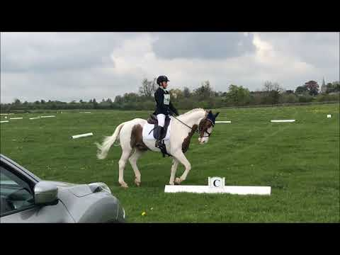 Whitfield BE90 Dressage Test BE97 24-04-19